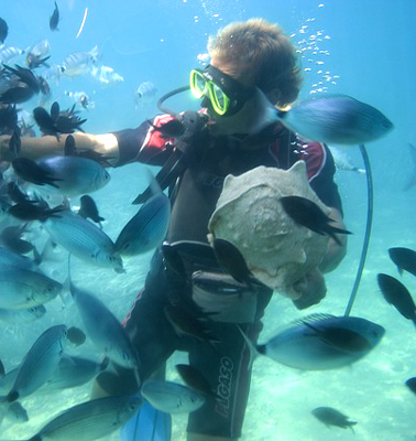 Scuba diving with jellyfish
