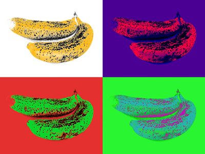 Warhol inspired composition